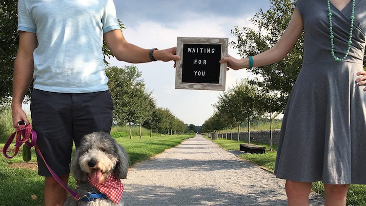 Katie & Trent are Adopting! Banner Image
